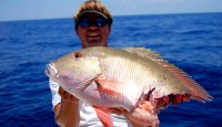 Mutton Snapper Caught From Deep Wreck