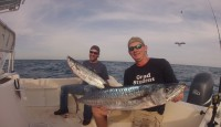 Giant Kingfish from the edge of the reef