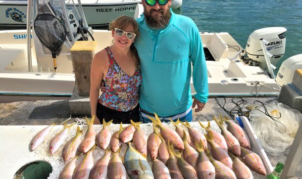 an excellent half day reef catch